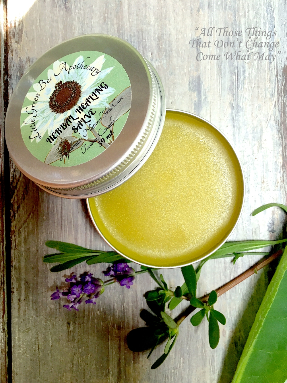 HERBAL HEALING SALVE copy