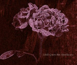 CROPPED GLOWING ROSE watermark